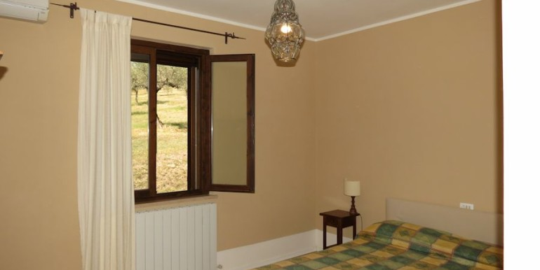 bedroom with view olive groove